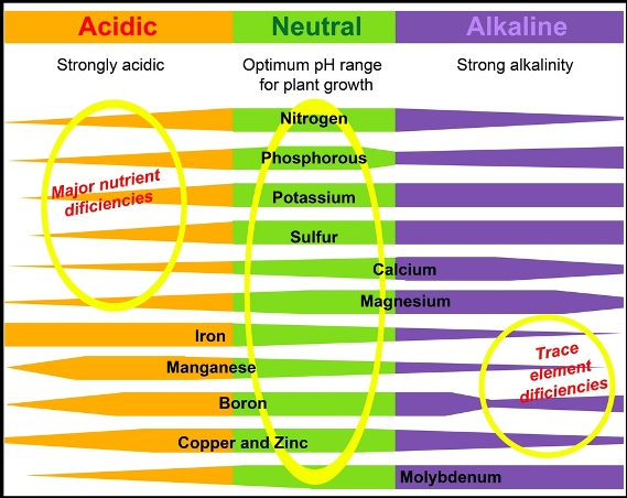 nutrients and ph